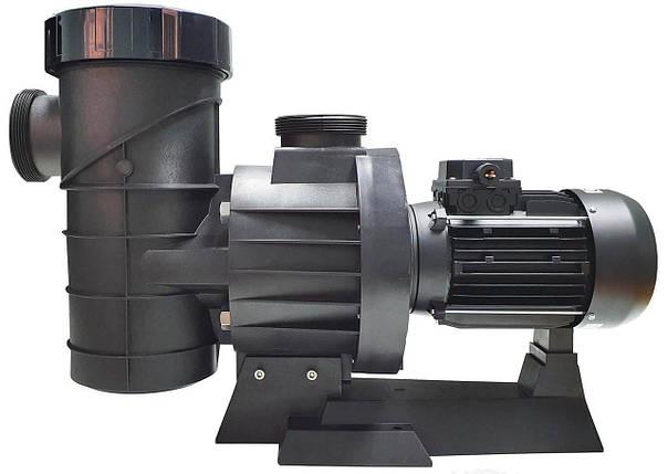 Astral Maxim/Fluidra Maxim 78 м3/час насос для бассейна, фото 2