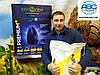 Семена подсолнечника Авалон Премиум НС 6046. Засухоустойчивый высокоурожайный 60ц/га, держит заразиху A-G+. Вес мешка 12кг.