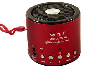 Портативная Колонка WSTER WS-Q9  Wiriless + Bluetooth + FM 87.5 - 108 MHz + TFT Card +  USB + PC