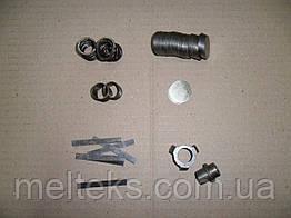 Ремкомплект клапанной группы ФУ 12, ФУ 8, 1П20, ФУУ 25