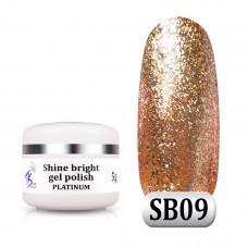 Гель паста Shine Bright platinum SB 09, 5 м