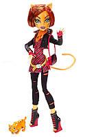 Кукла Монстер Хай Торалей Базовая с питомцем, дневником и аксессуарами Monster High Toralei Basic б/у 26 см