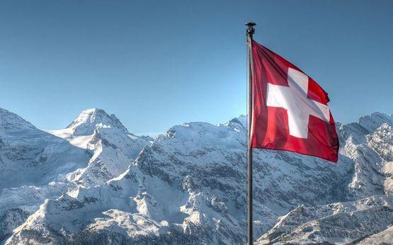 Почему именно Швейцарский ламинат ?