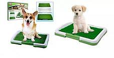 Комнатный туалет (лоток) для собак Puppy Potty Pad, фото 2