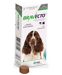 Bravecto Бравекто новый препарат от блох и иксодовых клещей для собак весом 10-20кг