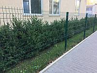 Секция ограждения длиной 2500 мм из сварной сетки 3D, СТАНДАРТ цинк/полимер, 4/4 мм,PROMZABOR, Украина, высота 1250