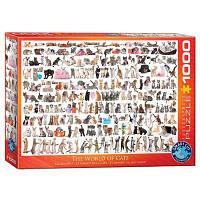 Пазл Eurographics Мир кошек, 1000 элементов