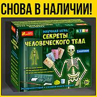 Научная игра Скелет человека рус | научные развивающие наборы игры для детей игр лет умница