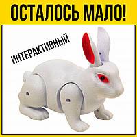 Кролик на батарейках | Белый детские развивающие игрушки для детей девочек мальчиков лет года