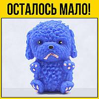 Антистресс Щеночек синий | Сквиш squishy с ароматом снятие стресса игрушки для рук детей взрослых