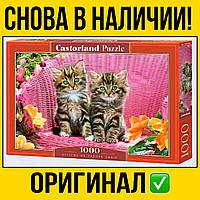 Пазлы Castorland на 1000 шт 68 * 30 | Котята , касторленд для взрослых коты кот сад пейзаж природа