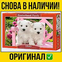 Пазлы Castorland на 1500 шт 68 * 47 | Щенки , касторленд для взрослых щенки природа животные