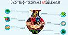 Фитокомплекс АнГель из натуральных компонентов поштучно, фото 3