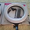 Кольцевая лампа широкая  с пультом. 32 см. От сети 220 в. Полный комплект, со штативом ., фото 3
