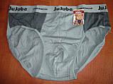 "Мужские плавки ""Jujube "". Хлопок. К701, фото 9"