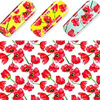 Слайдер для ногтей Master Beauty размером 6*7 см, Серия N -