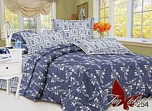 2-Спальный комлект постельного белья Сатин Люкс с компаньоном S254