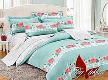 2-Спальный комплект постельного белья Поплин с компаньоном PC049