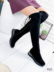 Сапоги женские ботфорты Evie черные 9120