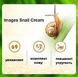 Крем с улиткой Images Snail Essence Moisturizing Cream для лица крем с муцином улитки, 50 мл, фото 5