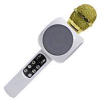 Беспроводной караоке микрофон DM Karaoke 1816 с слотом USB и microUSB Белый
