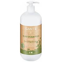 Sante Sante БИО-Шампунь для волос восстанавливающий Гинкго Билоба и Олива (950 мл)