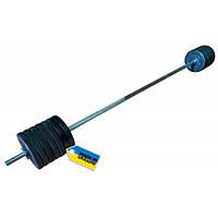 Newt Штанга Newt Home TI-0201-180-78 (78 кг)