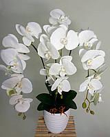 Орхидея латекс  на 3 веточки белая