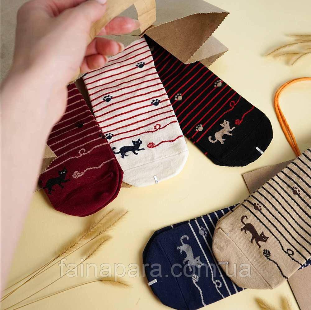 Шкарпетки жіночі смугасті коти