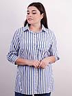 Дакота. Оригинальная женская рубашка больших размеров. Полоса., фото 2