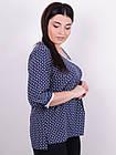 Леона принт. Стильная блуза больших размеров. Синий., фото 3