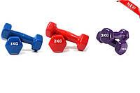 Гантели виниловые 1 кг цена за пару, гантели для фитнеса с виниловым покрытием 1,2,3 кг