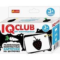 Развивающие контрастные карточки на шнурке. Овощи и фрукты (Р) 13152037