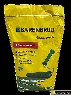 Газонная трава Quick repair SOS Быстрый ремонт Barenbrug - 5 кг, фото 2