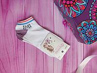 """Носки женские низкие """"Фенна"""" М, размер 37-41, цвет белый"""