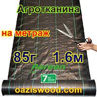 Агротканина на метраж 1,6м 85г/м. AGREEN плетена, чорна, щільна. Мульчування грунту на 7-10 років, фото 1