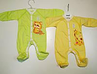 Человечек для новорожденного 62р ЛЕТНИЙ. Закрытый рукав. Цвета - в ассортименте 07-01