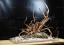Композиція для акваріума з Ротанга і Карпатського каменю