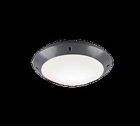 Уличный потолочный светильник Trio R60501042 Camaro