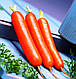 Морковь Дордонь F1, 5000 шт, Садыба Центр, фото 3