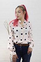Жіноча блузка в горошок