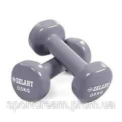 Виниловые гантели для фитнеса 2 х 0,5 кг TA-5225-0,5(GR) серый