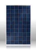 Солнечная батарея Perlight 250ВТ / 24В (Поликристалическая) PLM-250P-60