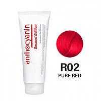 Гель-краска для волос Anthocyanin Second Edition R02 Pure Red 230 г