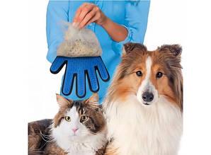 Перчатка для вычесывания шерсти животных True Touch  (Тру Тач) правая рука