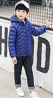 Куртка детская демисезонная детская Зигзаг
