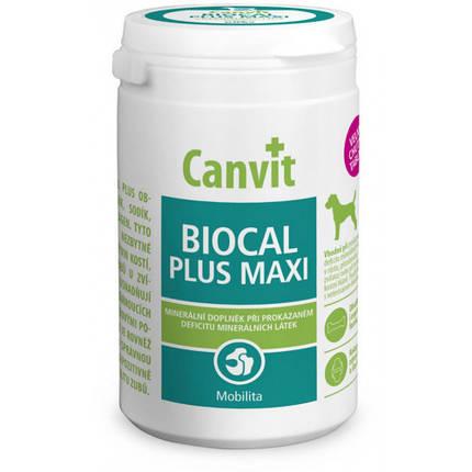 Витаминная добавка Canvit Biocal Plus Maxi for Dogs для укрепление иммунной системы для собак, 230 г, фото 2