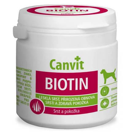 Витаминная добавка Canvit Biotin for Dogs для восстановление шерсти во время линьки у собак, 100 г, фото 2