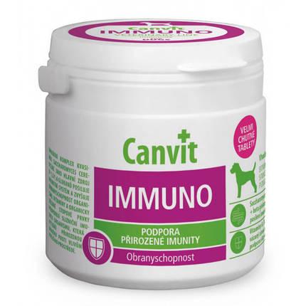 Вітамінна добавка Canvit Immuno for Dogs для зміцнення імунітету у собак, 100 г, фото 2