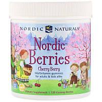 Nordic Naturals, Мультивитаминный комплекс 'Северные ягоды' с вишневым вкусом, 120 жевательных пастилок в форме ягод